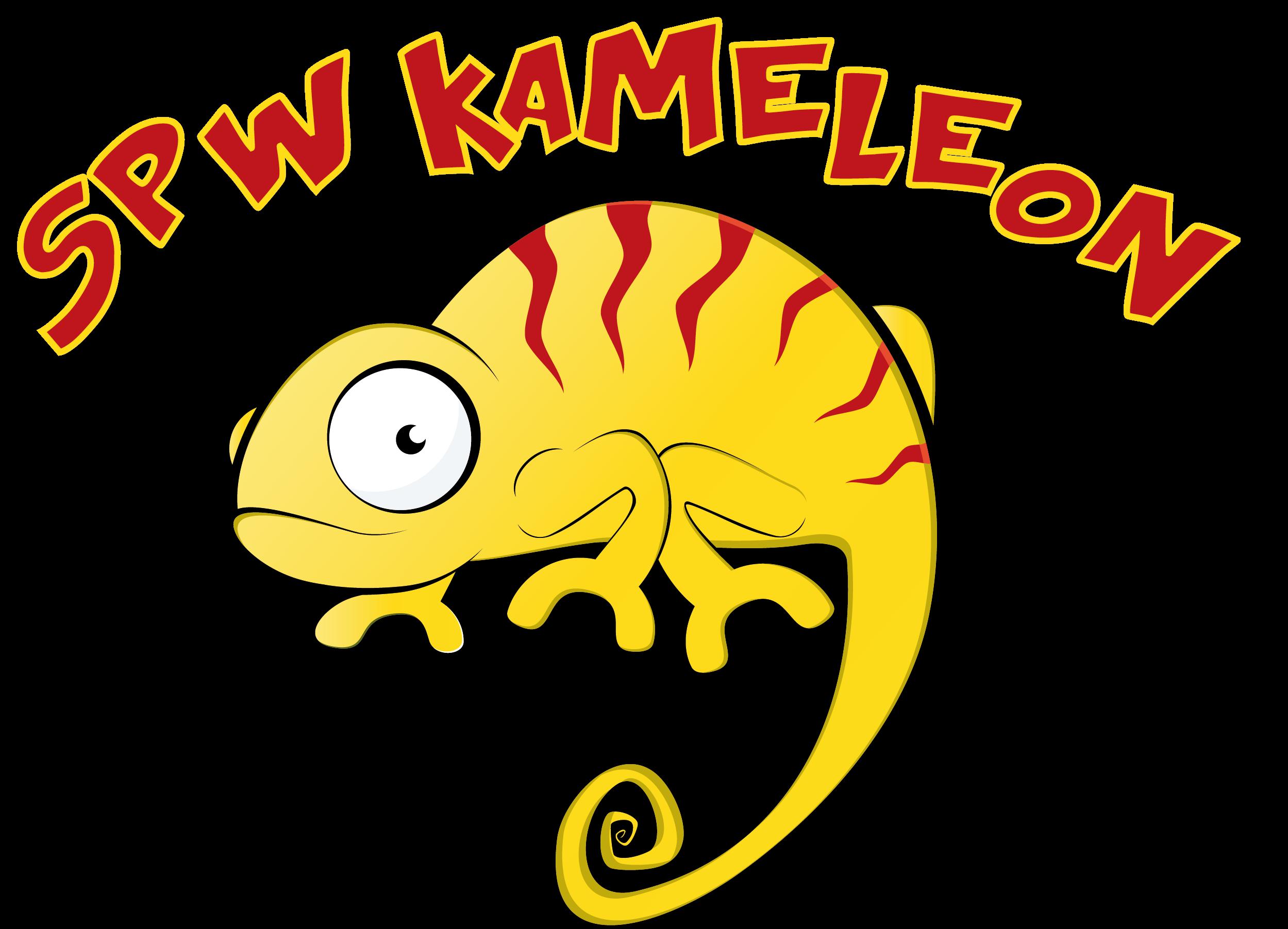 Speelpleinwerking Kameleon